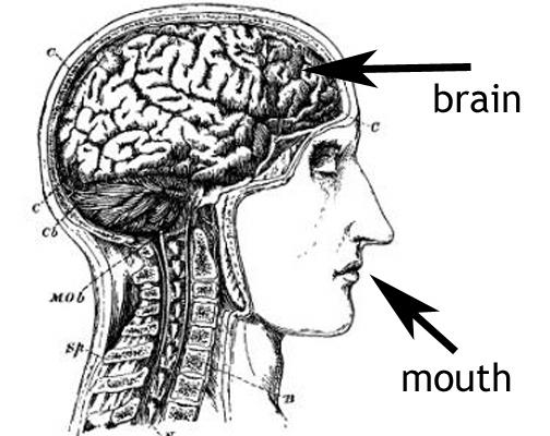 Brainmouth