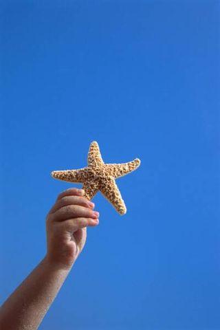 StarfishBoy