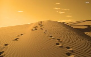 Footprints-in-The-Sand-